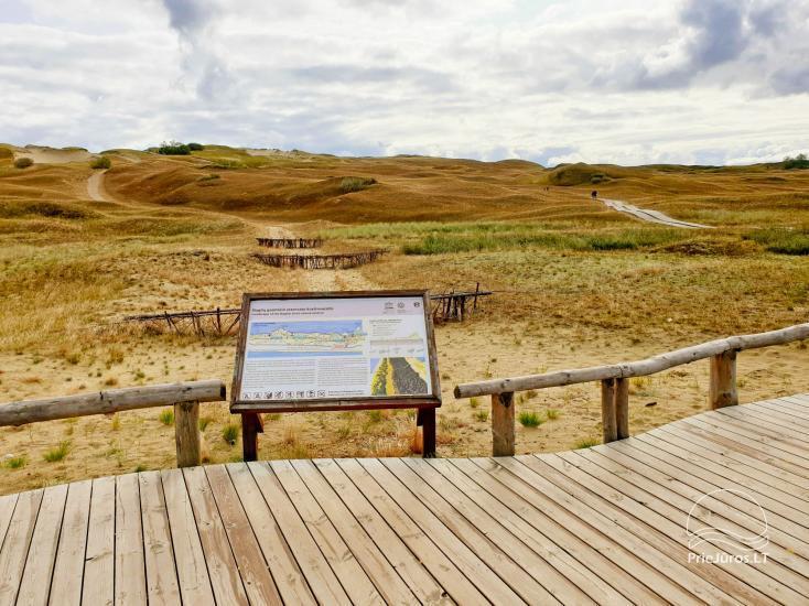 Pažintinis takas Naglių gamtos rezervate (Mirusios kopos)