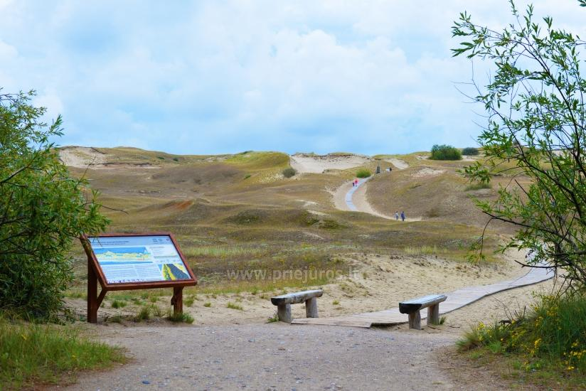 Cognitive Pathway in Nagliai Reserve in Curonian spit - 1
