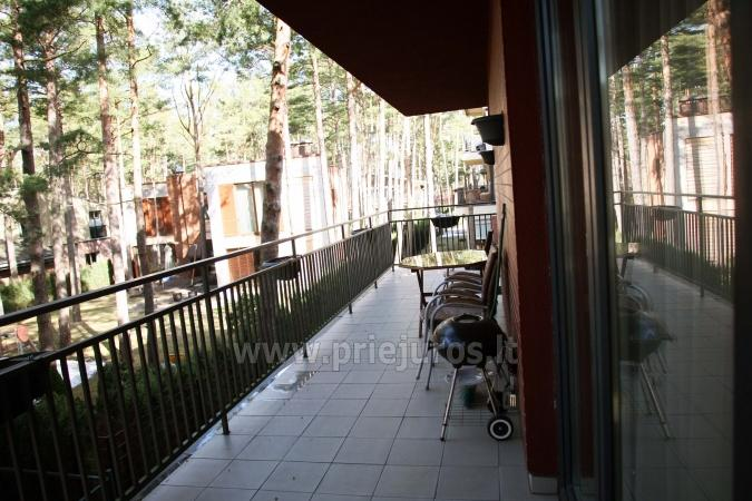 Well furnished apartment in Giruliai - 9