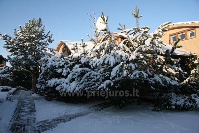 Šv. Kalėdos apartamentų komplekse Palangoje Palangos saulėgrąža