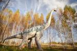 Park of dinosaurs, hotel, restaurant, banquets - Radailiu manor - 3