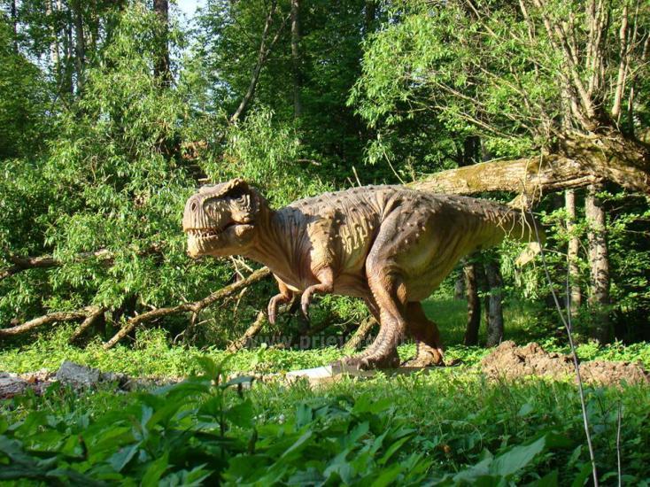 Park of dinosaurs, hotel, restaurant, banquets - Radailiu manor - 4