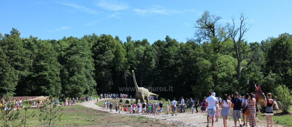 Park of dinosaurs, hotel, restaurant, banquets - Radailiu manor - 5