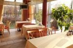 Park of dinosaurs, hotel, restaurant, banquets - Radailiu manor - 9