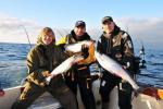 Jūras zvejniecība