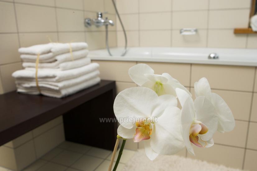 Jaukūs apartamentai ir dviviečiai kambariai Pajūrio Svečių Namuose, sauna, malonios staigmenos - 10
