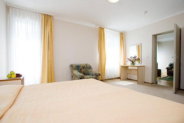Konferenzsaal in Hotel Austeja *** - 10