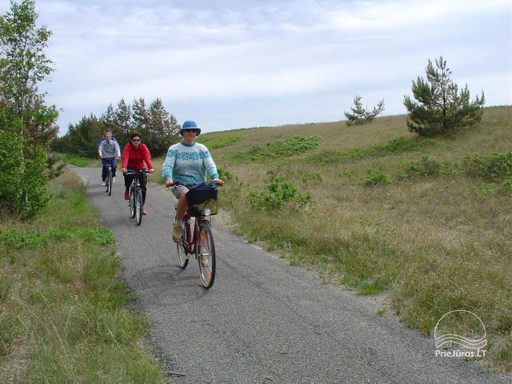 DURATAI.com – Klaipėdos dviračių paslaugų centras: nuoma, servisas, transportas, pardavimas - 8