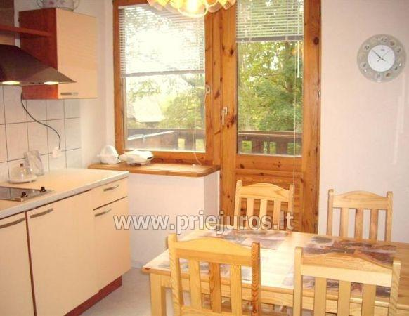 Two rooms flat with terrace in Curonian Spit