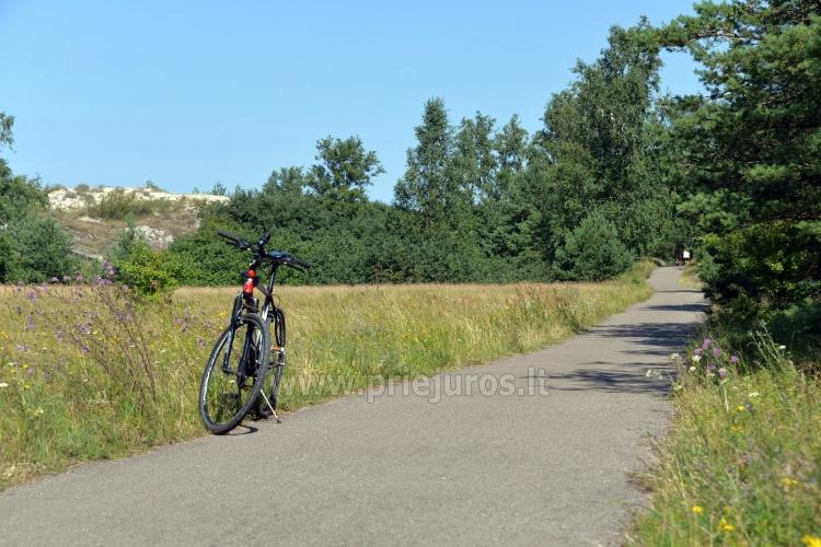 Seaside bicycle paths Palanga - Nida (90 km) - 3