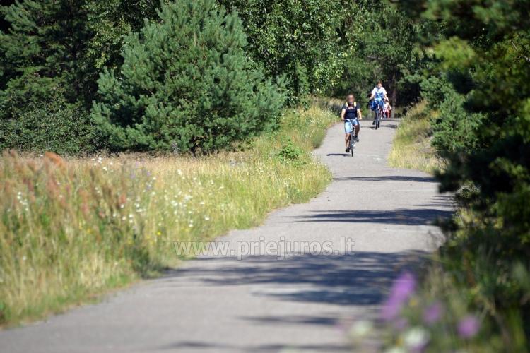 Pajūrio dviračių takas Palanga - Nida (90 km)