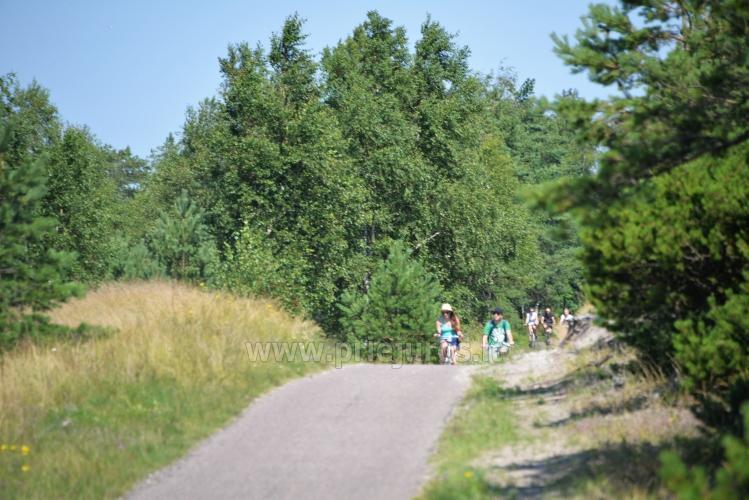 Seaside bicycle paths Palanga - Nida (90 km) - 4