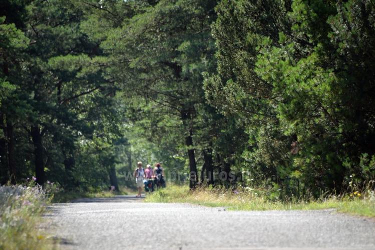 Pajūrio dviračių takas Palanga - Nida (90 km) - 9