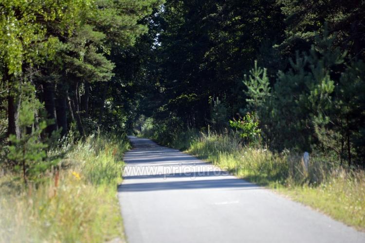 Pajūrio dviračių takas Palanga - Nida (90 km) - 18