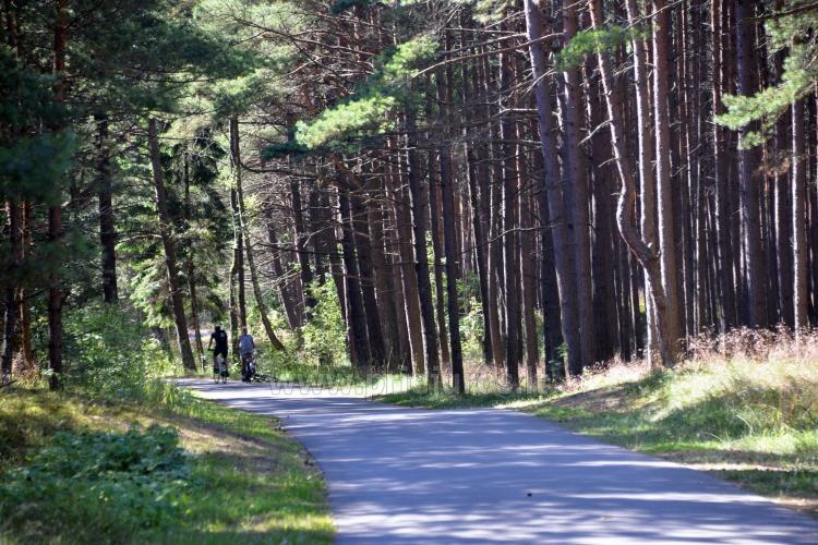 Pajūrio dviračių takas Palanga - Nida (90 km) - 27