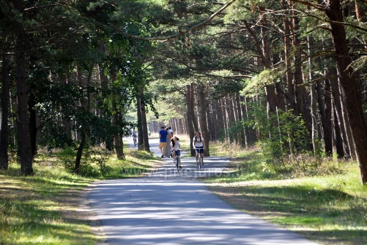 Pajūrio dviračių takas Palanga - Nida (90 km) - 33