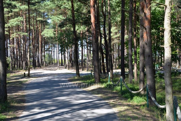 Pajūrio dviračių takas Palanga - Nida (90 km) - 35