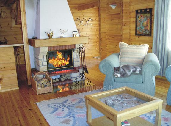 House with Sauna Rent in Palanga Villa Dovilas - 3