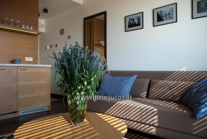 VISIT NIDA - Išskirtinės kokybės apartamentai žiemos šventėms!