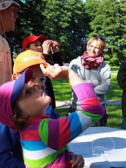 Angļu vasaras nometne par 6-17 gadu bērniem Narnia-2020 English OUTDOORS - 12