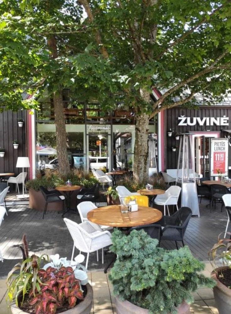 Restoranas Palangoje ŽUVINĖ - 1