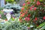 Privaten Hof mit einem Garten, Gartenmöbel, Pergola, Kinderspielplatz, PKW-Parkplatz - 19