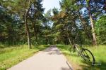 Küstenradweg - ca. 300 m von der Villa entfernt - 5