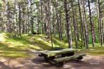 Кемпинг для палаток и кемперов - 6