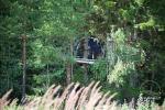 Namiot na drzewie - 2
