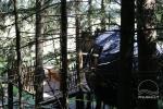 Namiot na drzewie - 5
