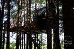 Zelt im Baum - 6
