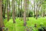 Miškų vila - 6